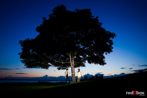 Just after sunset, Anghi and Andy's stand under a tree in Myrtle Edwards Park in Seattle during their engagement portrait session. Photo by Dan DeLong/Red Box Pictures