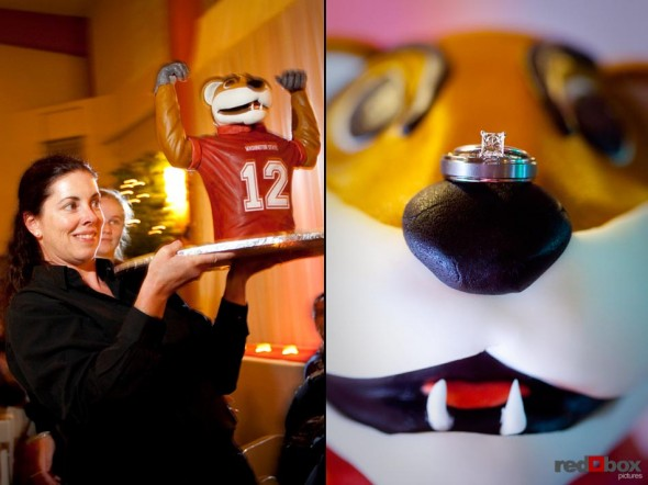 The bride surprised the groom with a special groom's cake of the WSU mascot Butch the Cougar during the reception at The Hall at Fauntleroy in Seattle, Washington. Seattle Wedding Photographer Red Box Pictures Scott Eklund