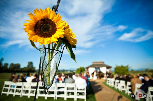 Sunflowers add to the wedding decor during a outdoor ceremony at Hidden Meadow, a wedding facility in the countryside near Snohomish, WA. (Photo by Dan DeLong/Red Box Pictures)