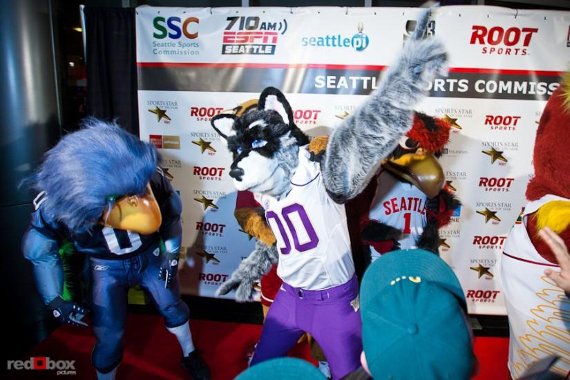 washington-seattle-sports-mascots.jpg