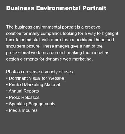 Business Environmental Portrait Description